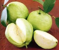 benefits of Guava for diabetes