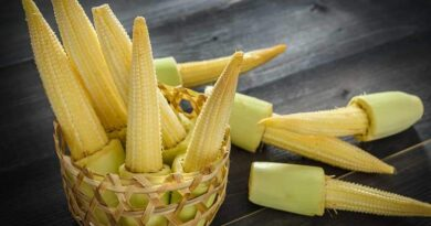 Health Benefits of Baby Corn